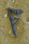 HIGH ELF LOTHERN SKYCUTTER SWORD AND ARM