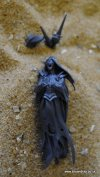 COVEN THRONE/MORTIS ENGINE BANSHEE C