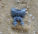 SPACE MARINE STERNGUARD TORSO D