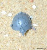 SPACE WOLVES: WOLF GUARD TERMINATOR SHOULDER PAD L