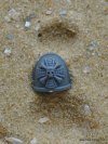 SPACE MARINE VANGUARD SHOULDER PAD D