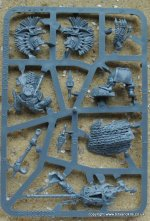AGE OF SIGMAR STORM CAST TRANSFERS